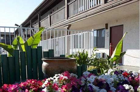 Welcome To EZ 8 Motel Newark California - Beautifully Landscaped